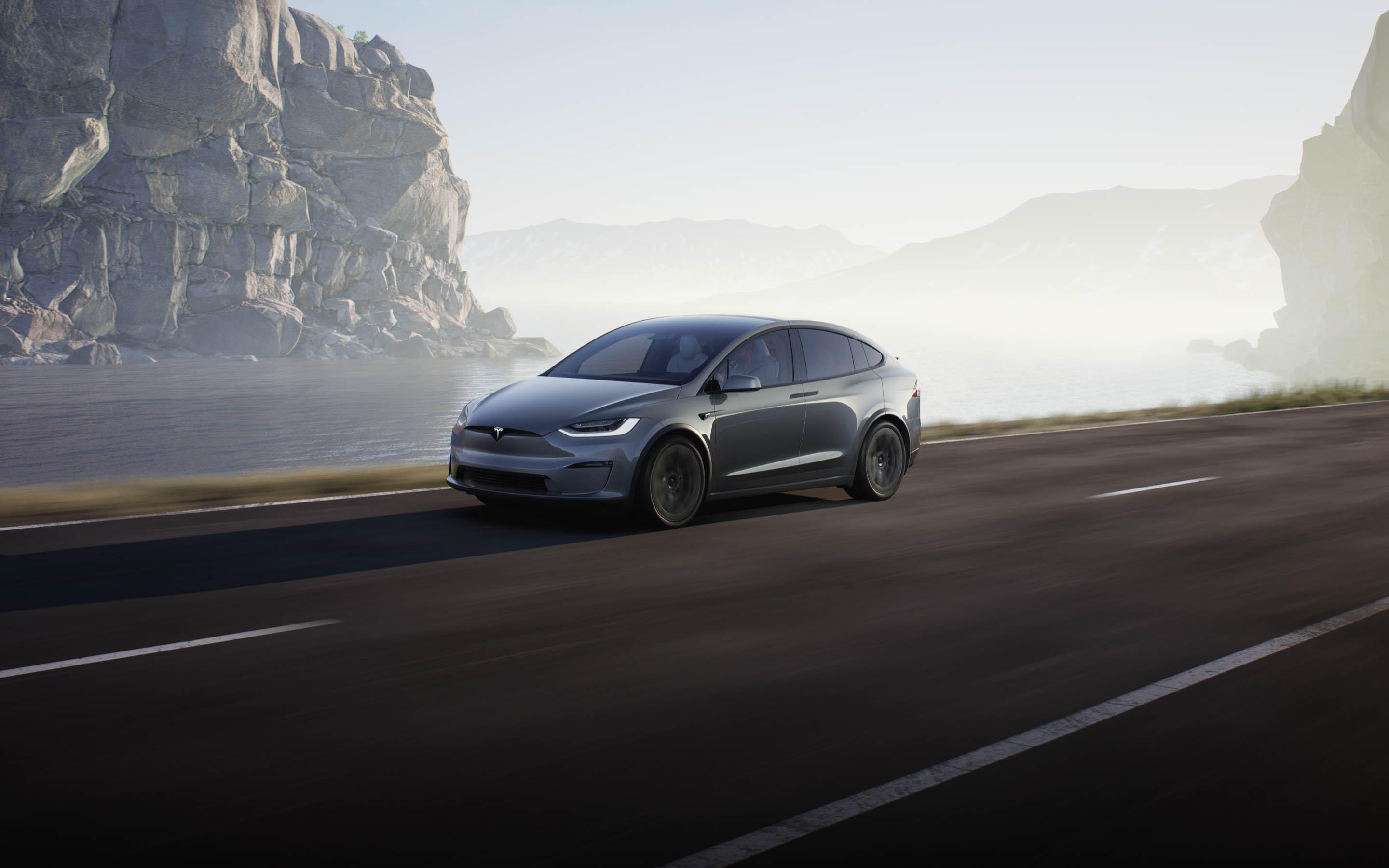 Image of grey Model X